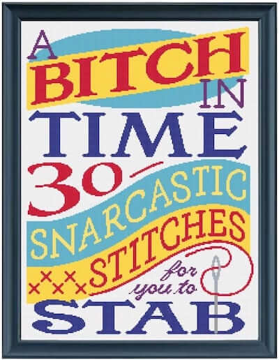 A Bitch In Time 30 Snarcastic Stitches For You To Stab Cross Stitch Book Cover (Source: bitchintime.com)